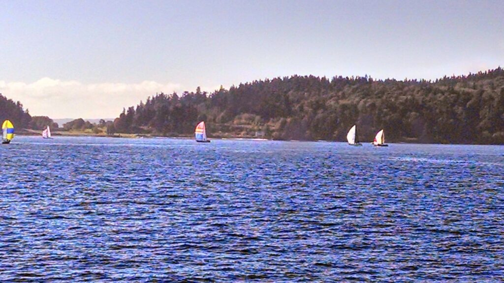 A view of sailboats on Puget Sound near Bainbridge Island